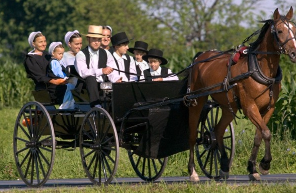 What Is So Incredible About The Amish Culture? Find Out Here